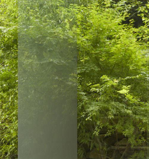 Illumina Silver Window Tint Specialists Decorative Window Film Authorized Platinum 3M Dealer Orlando
